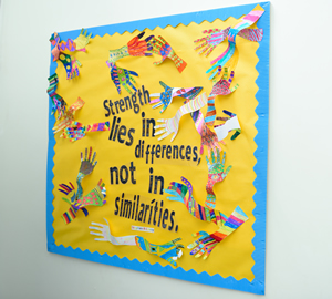 Strength lies in differences not similarities