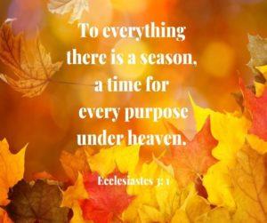 Ecclesiastes Bible Verse