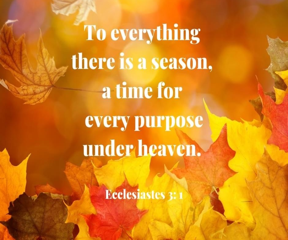 Ecclesiastes verse